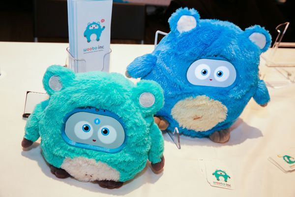 Smart toys are a minefield, for both toymakers and parents